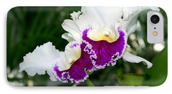 Orchid 6 Phone Case by Marty Koch