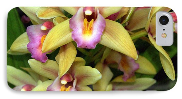 Orchid 7 Phone Case by Marty Koch