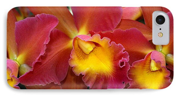 Orchid 8 Phone Case by Marty Koch
