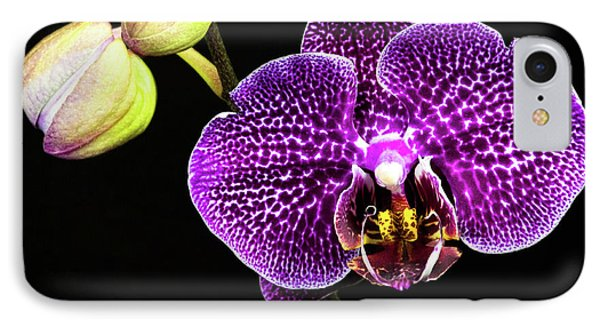 Orchid Phone Case by Christopher Holmes