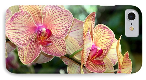 Orchid Delight Phone Case by Karen Wiles