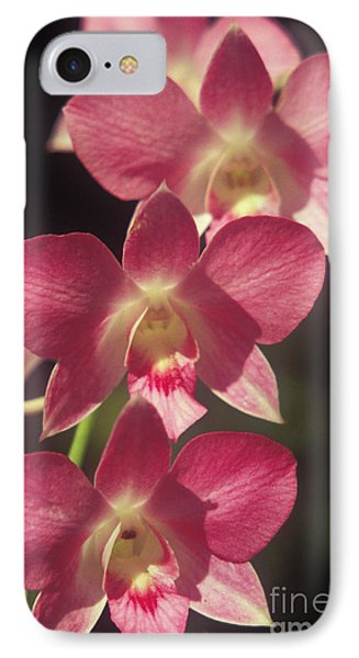 Orchid Flowers Phone Case by Kyle Rothenborg - Printscapes