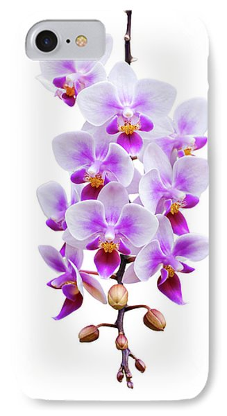 Orchid IPhone Case by Meirion Matthias