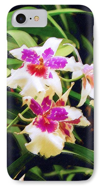 IPhone Case featuring the painting Orchids 1 by Sandy MacGowan