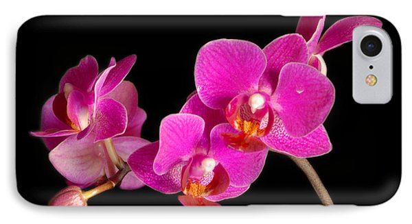 IPhone Case featuring the photograph Orchids by Alana Ranney