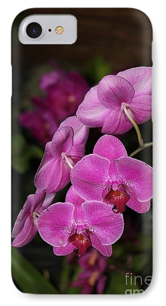 Orchids Alicia IPhone Case