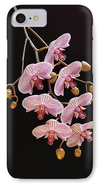 Orchids Galore IPhone Case by Bijan Pirnia