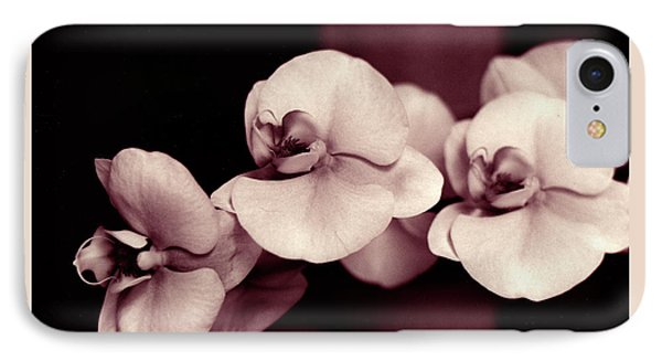 Orchids Hawaii IPhone Case by Mukta Gupta