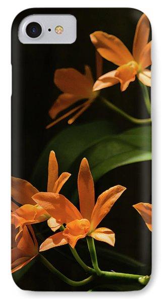 Orchids In Orange IPhone Case