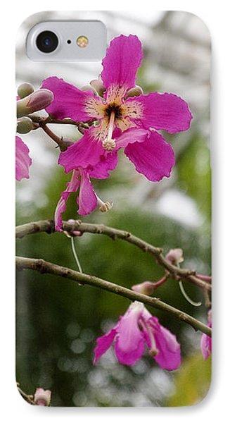 Orchids Myriad Botanical Gardens Okc IPhone Case by Toni Hopper