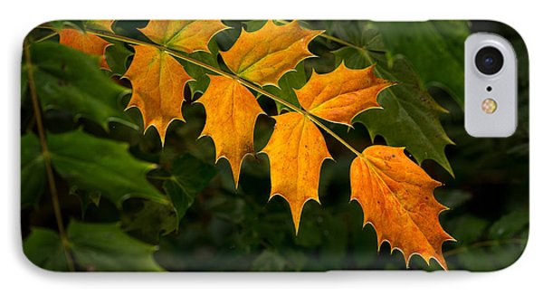 Oregon Grape Autumn IPhone Case by Mary Jo Allen
