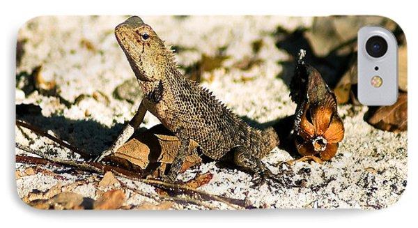 Oriental Garden Lizard A Dragon In The Maldives Phone Case by Chris Smith