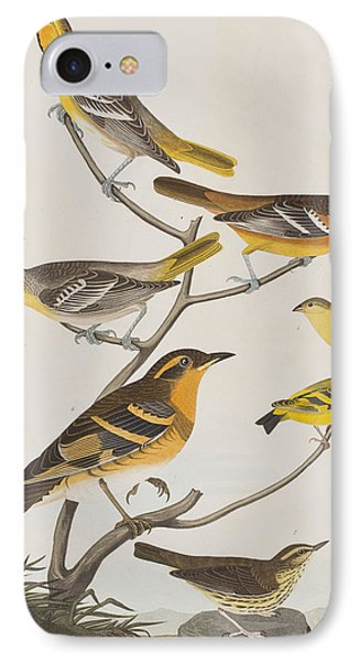 Orioles Thrushes And Goldfinches IPhone 7 Case
