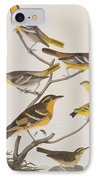 Orioles Thrushes And Goldfinches IPhone Case by John James Audubon
