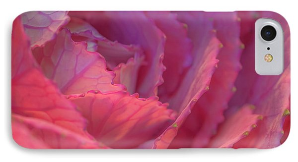 Ornamental Pink IPhone Case by Roy McPeak