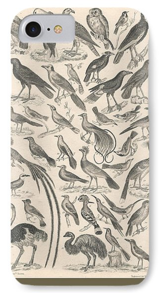 Ornithology IPhone Case