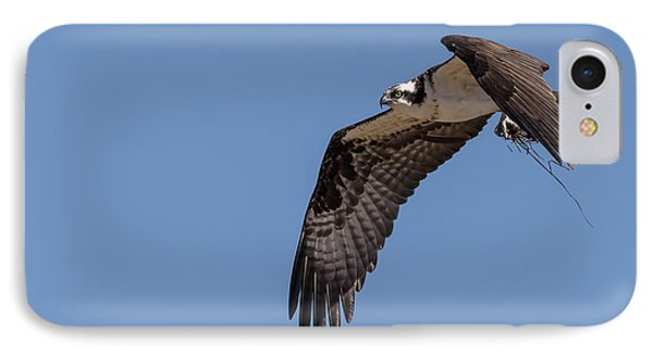Osprey 2017-1 IPhone Case by Thomas Young