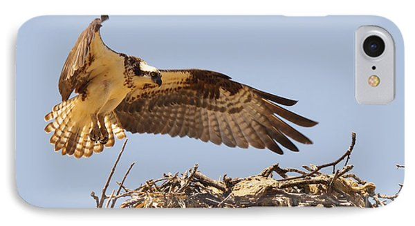 Osprey Hovering Above Nest IPhone Case by Max Allen