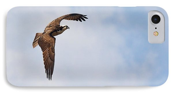 IPhone Case featuring the photograph Osprey In Flight by Bob Decker