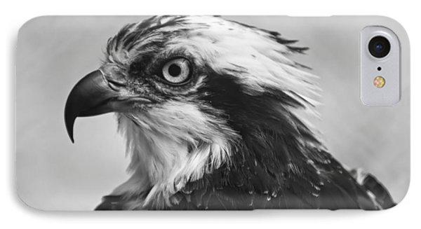 Osprey Monochrome Portrait IPhone 7 Case