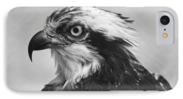Osprey Monochrome Portrait IPhone Case by Chris Flees