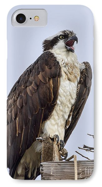 IPhone Case featuring the photograph Osprey On Its Perch by Eddie Yerkish