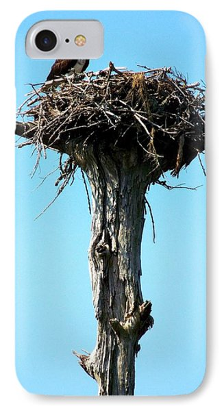 Osprey Point IPhone Case by Karen Wiles