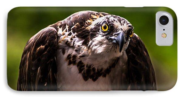 Osprey Profile IPhone Case