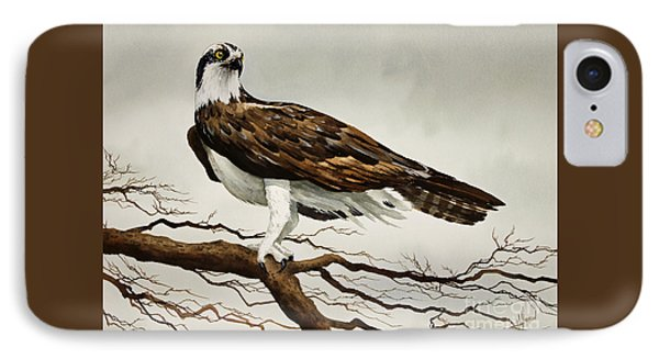 Osprey Sea Hawk IPhone Case by James Williamson
