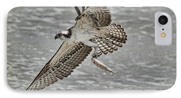 Osprey With Breakfast Phone Case by Deborah Benoit