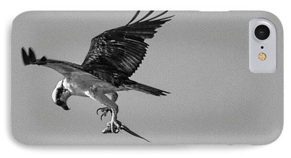Osprey With Prey IPhone Case