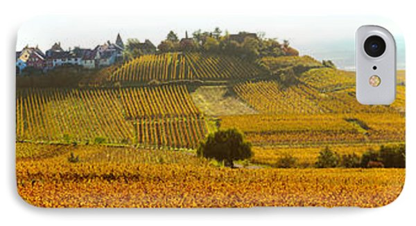 Ostheim Village And Vineyards IPhone Case by Panoramic Images