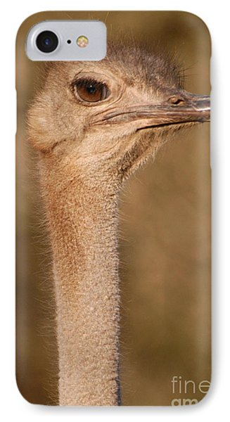 Ostrich Head Phone Case by Andy Smy