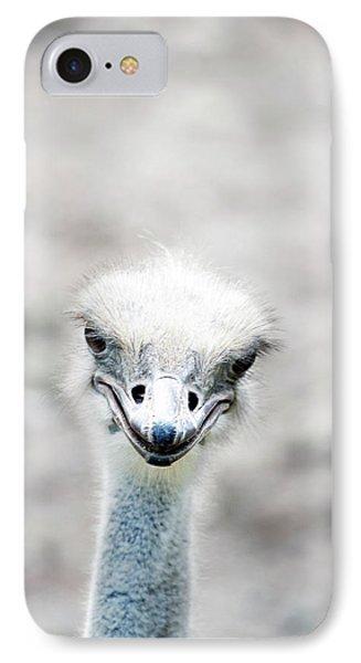 Ostrich IPhone Case by Lauren Mancke