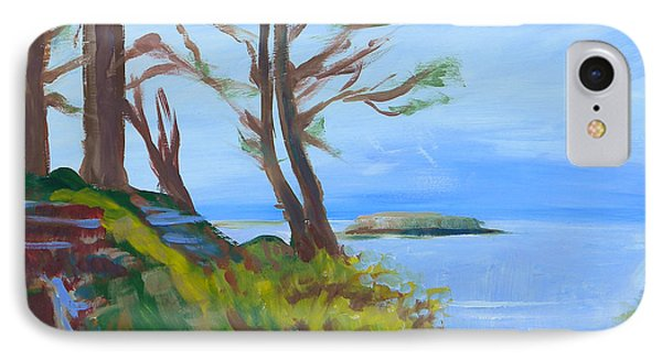 Otter Rock Marine Garden Path Phone Case by Pam Van Londen