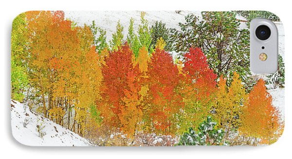 Our Winter Begins Around Mid October.  IPhone Case by Bijan Pirnia