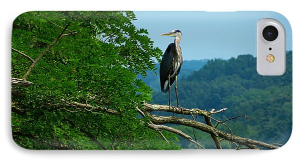 IPhone Case featuring the photograph Out On A Limb by Donald C Morgan
