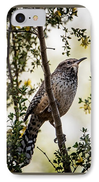 Out On A Limb IPhone Case by Jon Berghoff
