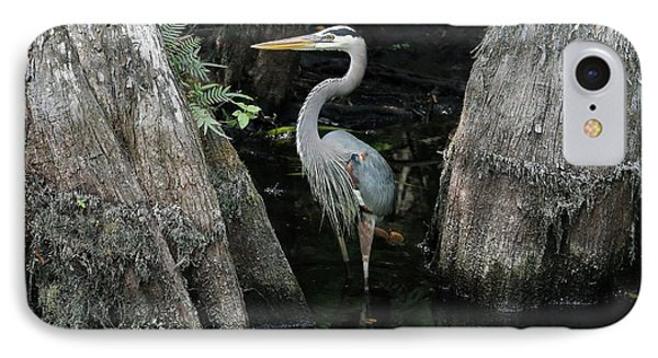 Out Standing In The Swamp IPhone Case by Lamarre Labadie