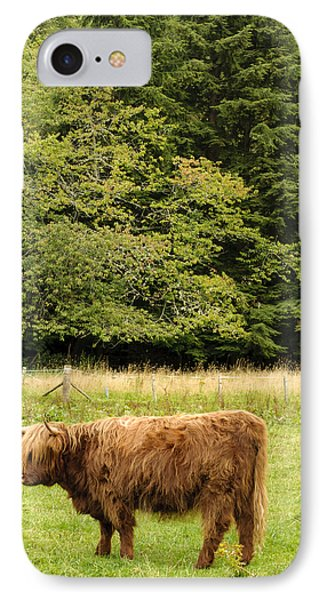 Out To Pasture IPhone Case by Christi Kraft
