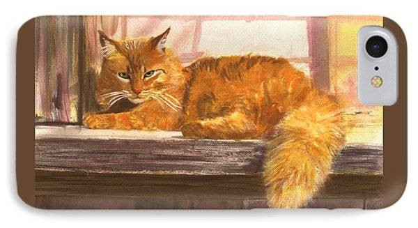 Outside Orange Tabby IPhone Case
