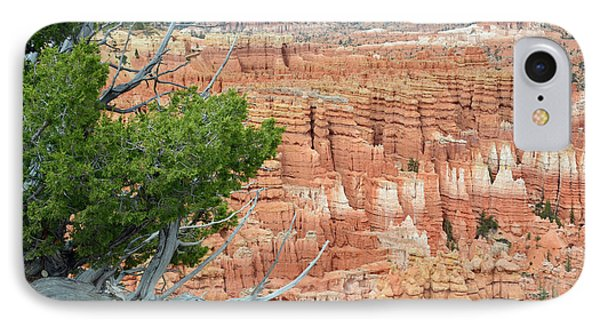 IPhone Case featuring the photograph Overlooking Bryce Canyon by Bruce Gourley