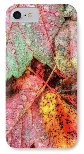 Overnight Rain Leaves IPhone Case by Todd Breitling