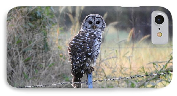 Owl Cherish This Moment Forever Phone Case by Roxanne Raber