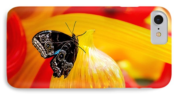 Owl Eye Butterfly On Colorful Glass IPhone Case by Tom Mc Nemar