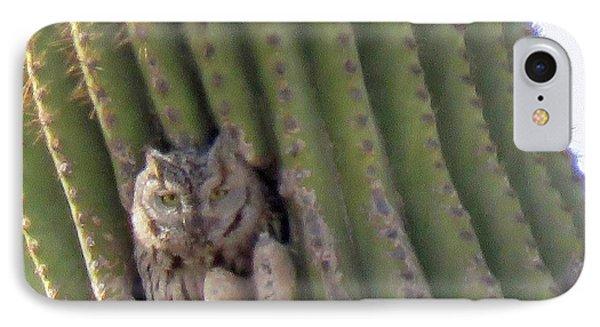 Owl In Cactus Burrow IPhone Case