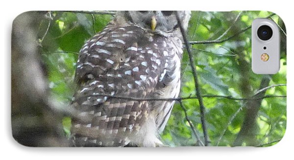 IPhone Case featuring the photograph Owl On A Limb by Donald C Morgan