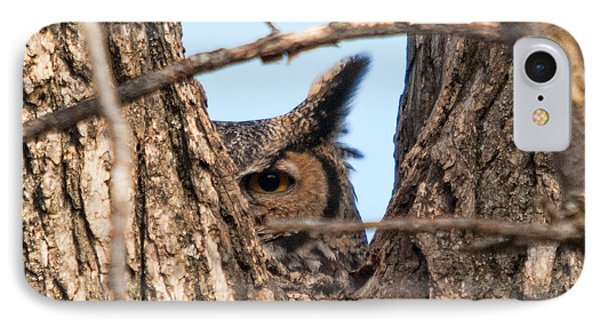 Owl Peek IPhone Case by Steve Stuller