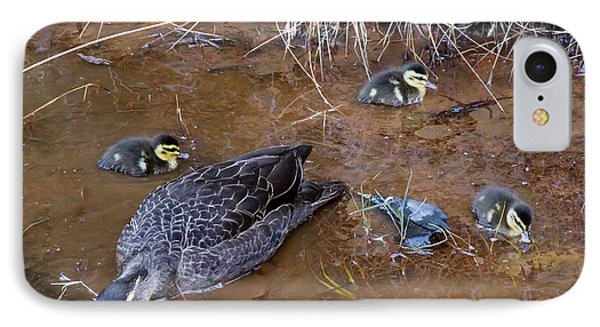 IPhone Case featuring the photograph Pacific Black Duck Family by Miroslava Jurcik