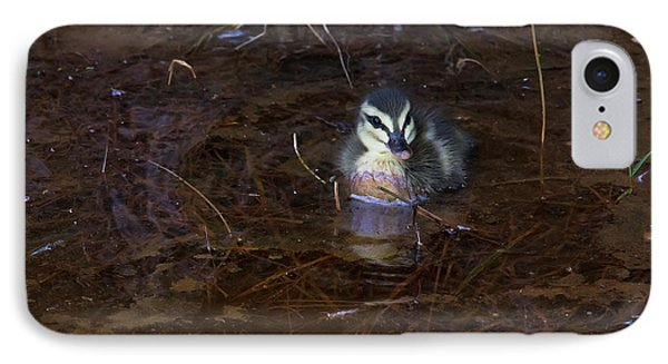 IPhone Case featuring the photograph Pacific Black Duckling by Miroslava Jurcik